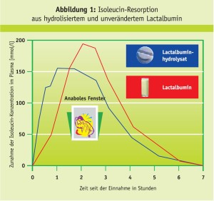 Isoleucin-Resorption