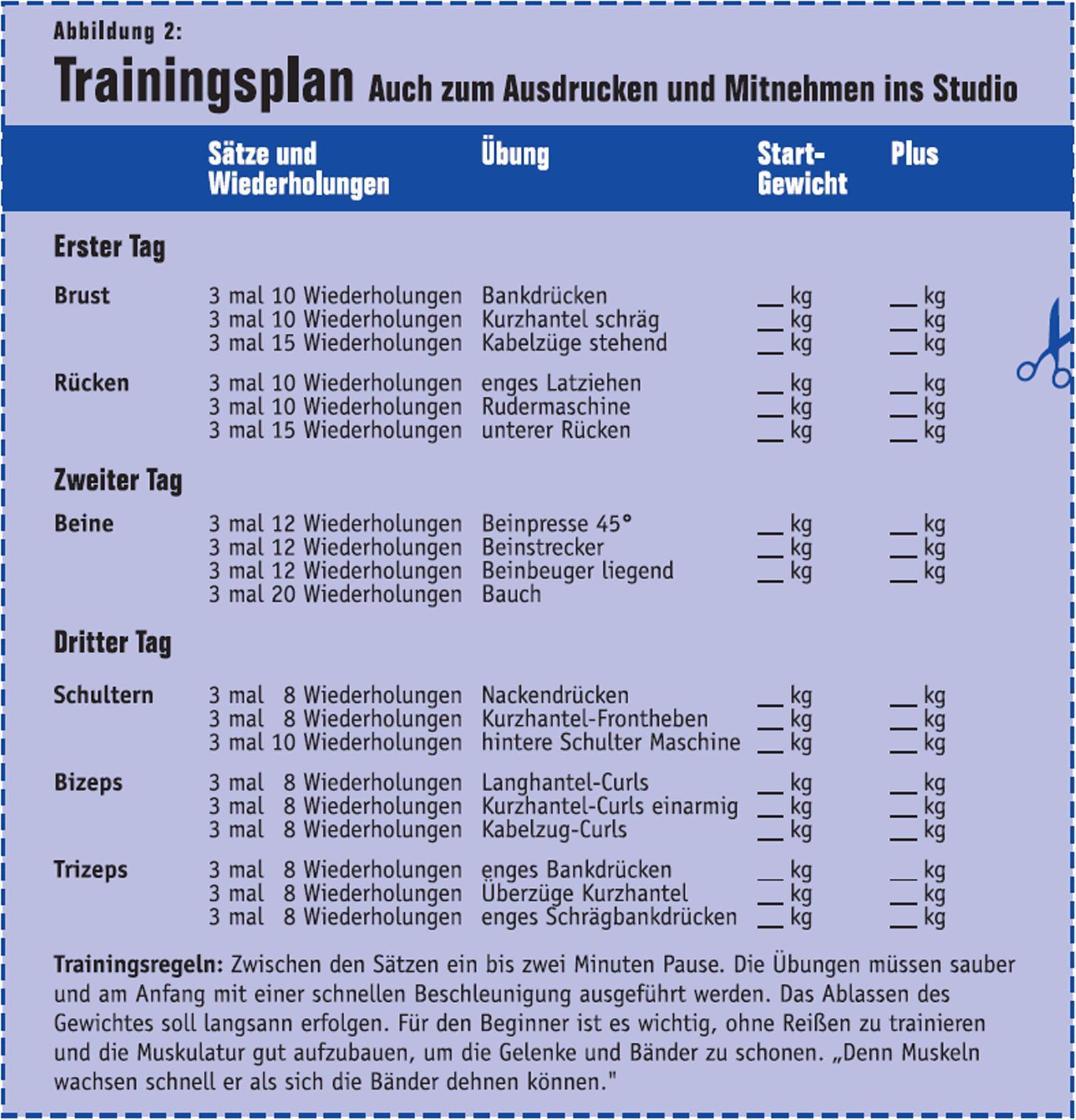 Trainingsplan Archive Ironbody Fitness Ernährung