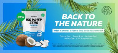 Iso Whey Zero Natural - 500g powder (Biotech USA)
